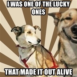 Stoner dogs concerned friend - I WAS ONE OF THE LUCKY ONES  THAT MADE IT OUT ALIVE