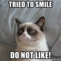 Grumpy cat good - tried to smile do not like!