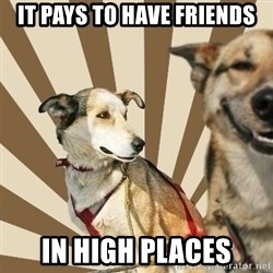 Stoner dogs concerned friend - IT PAYS TO HAVE FRIENDS IN HIGH PLACES