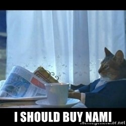 Thinking Cat -  I should buy nami