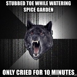 Insanity Wolf - stubbed toe while watering spice garden only cried for 10 minutes