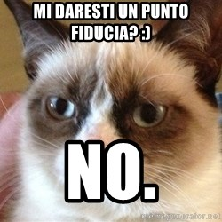Angry Cat Meme - mi daresti un punto fiducia? :) no.