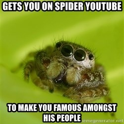The Spider Bro - gets you on spider youtube to make you famous amongst his people