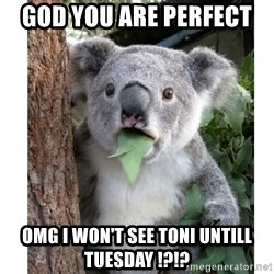 surprised koala - GOD YOU ARE PERFECT  OMG I WON'T SEE TONI UNTILL TUESDAY !?!?