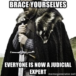 Brace Yourselves.  John is turning 21. - Brace yourselves Everyone is now a judicial expert