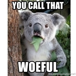 surprised koala - You call that woeful
