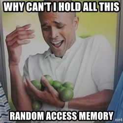 Limes Guy - Why can't I hold all this  Random Access MEMORY