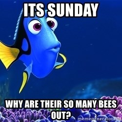 Forgetful Dori - its Sunday why are their so many bees out?