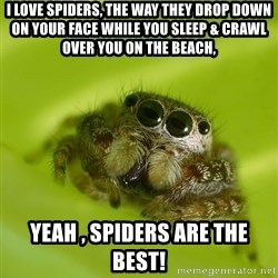 The Spider Bro - I LOVE Spiders, the way they drop down on your face while you sleep & crawl over you on the beach,  Yeah , spiders are the best!