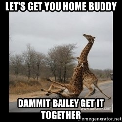 Trust Fall Giraffes - Let's get you home buddy DAMMIT BAILEY get it together