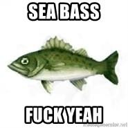 invadent sea bass - Sea Bass Fuck Yeah