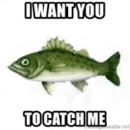 invadent sea bass - I Want you to catch me