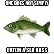 invadent sea bass - One does not simply Catch a sea bass