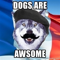 Monsieur Le Courage Wolf - dogs are awsome