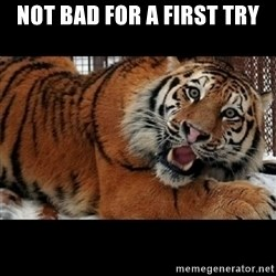 Sarcasm Tiger - not bad for a first try