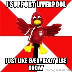 Liverpool Problems - I SUPPORT LIVERPOOL  JUST LIKE EVERYBODY ELSE TODAY