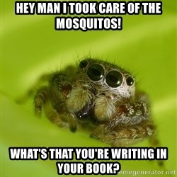 The Spider Bro - Hey man I took care of the mosquitos! What's that you're writing in your book?