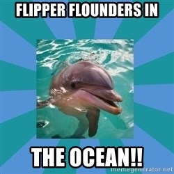 Dyscalculic Dolphin - flipper flounders in the ocean!!