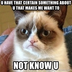 Grumpy Cat  - u have that certain something about u that makes me want to not know u