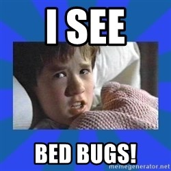 i see dead people - I SEE bed bugs!