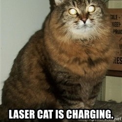 ZOE GREAVES DTES VANCOUVER -  LASER CAT IS CHARGING.