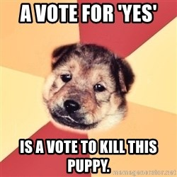 Typical Puppy - A vote for 'yes'  Is a vote to kill this puppy.