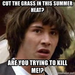 Conspiracy Keanu - cut the grass in this summer heat? are you trying to kill me!?