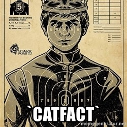Child queen Phlash Misericord -  `catfact`