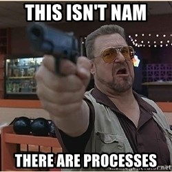 WalterGun - THIS ISN'T NAM THERE ARE PROCESSES