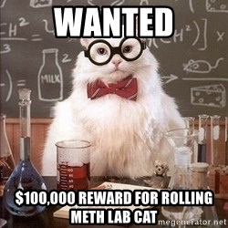 Chemistry Cat - WANTED $100,000 reward for rolling meth lab cat