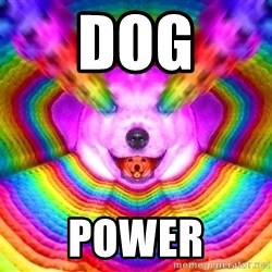 Final Advice Dog - DOG POWER
