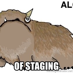 alot -  of staging