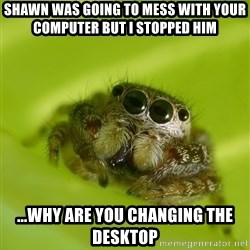 The Spider Bro - Shawn was going to mess with your computer but I stopped him ...why are you changing the desktop