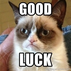 Grumpy Cat  - good luck
