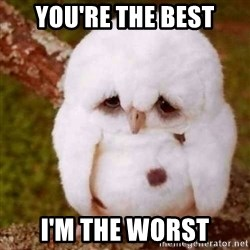 Depressed Owl - You're the best I'm the worst