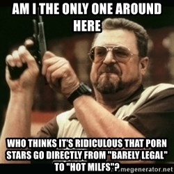 """am i the only one around here - am i the only one around here who thinks it's ridiculous that porn stars go directly from """"barely legal"""" to """"hot milfs""""?"""