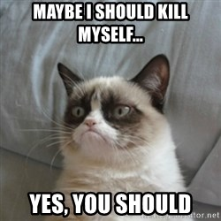 Grumpy Cat ={ - MAYBE I SHOULD KILL MYSELF... YES, YOU SHOULD