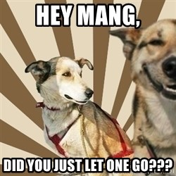 Stoner dogs concerned friend - Hey Mang, Did you just let one go???