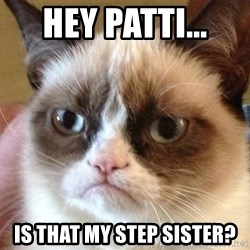 Angry Cat Meme - hey patti...  is that my step sister?