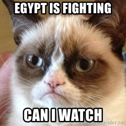 Angry Cat Meme - Egypt is fighting CAN I WATCH