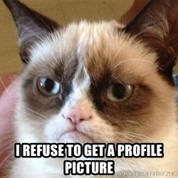 Angry Cat Meme -  I REFUSE TO GET A PROFILE PICTURE