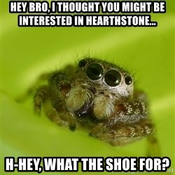 The Spider Bro - Hey bro, I thought you might be interested in Hearthstone... H-hey, what the shoe for?