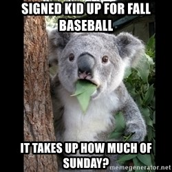 Koala can't believe it - Signed kid up for fall baseball It takes up how much of sunday?