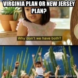 Why not both? - Virginia plan or New Jersey Plan?