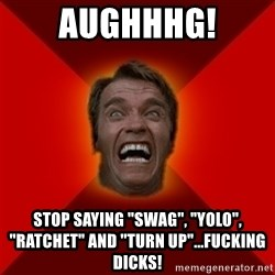 """Angry Arnold - AUGHHHG! Stop saying """"swag"""", """"YOLO"""", """"Ratchet"""" and """"Turn up""""...Fucking dicks!"""