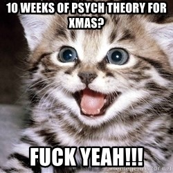 HAPPY KITTEN - 10 weeks of psych theory for xmas? fuck yeah!!!
