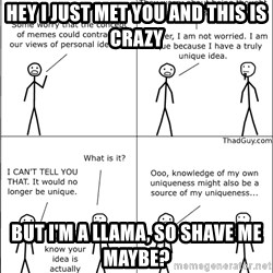 Memes - Hey I just met you and this is crazy But I'm a llama, so shave me maybe?