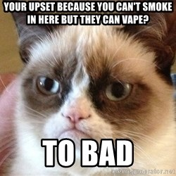 Angry Cat Meme - Your Upset because you can't smoke in here but they can Vape? To bad