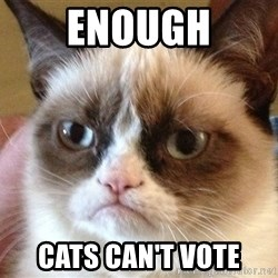Angry Cat Meme - ENOUGH CATS CAN'T VOTE