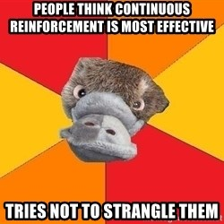 Psychology Student Platypus - People think continuous reinforcement is most effective Tries not to strangle them
